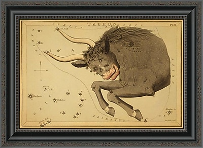 East Urban Home 'Taurus the Bull; 1825' Framed Print; 20'' H x 22'' W x 1.5'' D