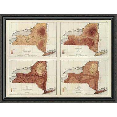 East Urban Home 'New York: Rainfall; Population; Elevation; Temperature; 1895' Framed Print