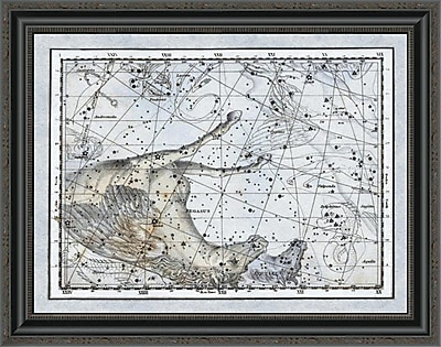 East Urban Home 'Maps of the Heavens: Pegasus the Horse' Framed Print; 28'' H x 28'' W x 1.5'' D