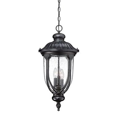 Fleur De Lis Living Angie 3-Light Outdoor Hanging Lantern