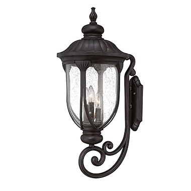 Fleur De Lis Living Angie 3-Light Outdoor Sconce; Black Coral