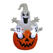 The Holiday Aisle Halloween Inflatable Pumpkin w/ Ghost