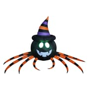 The Holiday Aisle Halloween Inflatable Spider w/ Hat