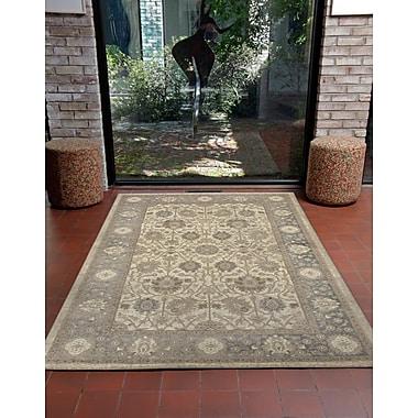 Charlton Home Montes Sarouk Ivory/Gray Indoor Area Rug; 7'10'' x 9'10''