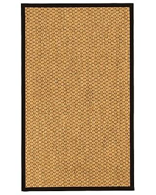 Bayou Breeze Arya Natural Fiber Sisal Hand-Woven Beige Area Rug; 9' x 12'