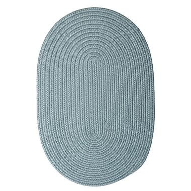 Winston Porter Mcintyre Blue Outdoor Area Rug; Oval 2' x 4'