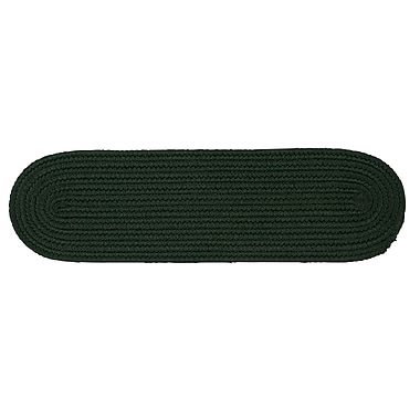 Winston Porter Mcintyre Dark Green Stair Tread; Set of 13