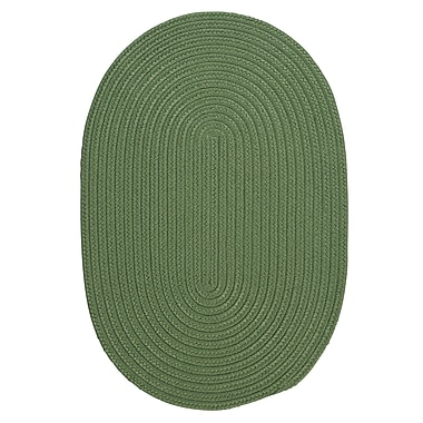 Winston Porter Mcintyre Moss Green Indoor/Outdoor Area Rug; Oval 2' x 4'