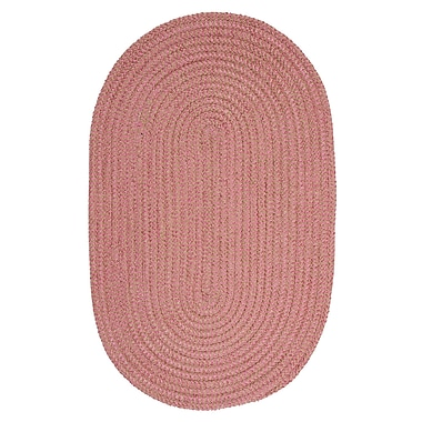 Winston Porter Hale Check Indoor/Outdoor Area Rug; Oval 2' x 4'