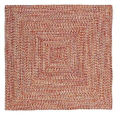 Winston Porter Hawkins Fireball Indoor/Outdoor Area Rug; Square 10'