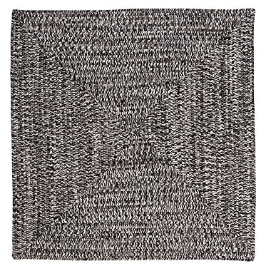 Winston Porter Hawkins Blacktop Indoor/Outdoor Area Rug; Square 4'