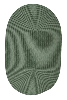 Winston Porter Mcintyre Myrtle Green Indoor/Outdoor Area Rug; Oval 3' x 5'