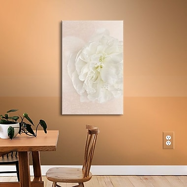 Winston Porter White Peony Photographic Print on Wrapped Canvas; 32'' H x 48'' W x 2'' D