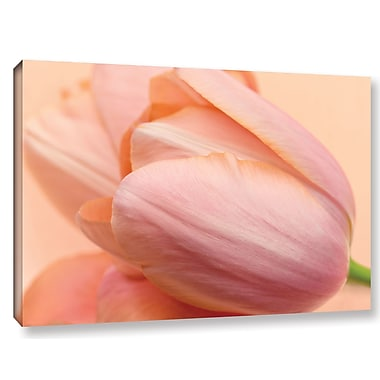Winston Porter Silky Tulips Photographic Print on Wrapped Canvas; 16'' H x 24'' W x 2'' D