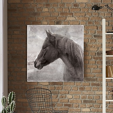 Red Barrel Studio 'Vintage View Ii' Photographic Print on Wrapped Canvas; 18'' H x 18'' W