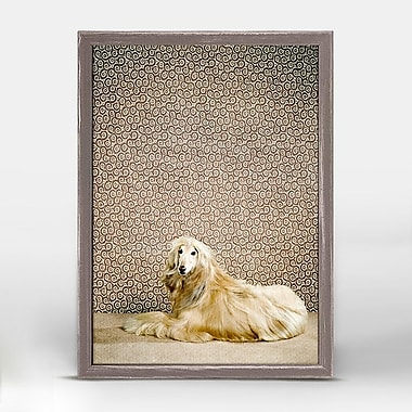 Ebern Designs Afghan Hound Framed Photographic Print on Wrapped Canvas