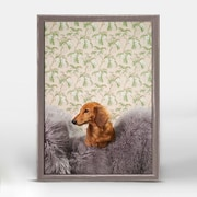 Ebern Designs Cute Dachshund Framed Photographic Print on Canvas