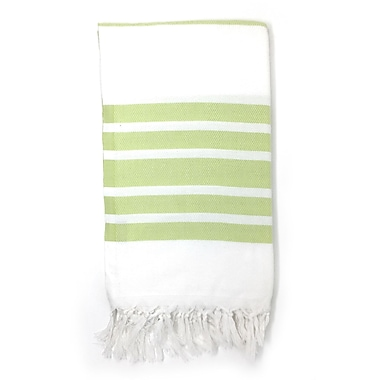 Highland Dunes Luxury Pestemal Fouta Turkish Beach Towel; Light Green