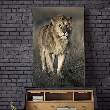 Bloomsbury Market 'Morning Walk in Masai Mara' Photographic Print on Wrapped Canvas; 30'' H x 18'' W