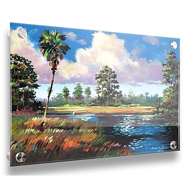Bayou Breeze 'Sweetwater Glade' Acrylic Painting Print; 18'' H x 24'' W x 0.25'' D