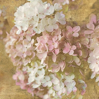 Ophelia & Co. 'Gilded Hydrangea II' Graphic Art on Wrapped Canvas; 18'' H x 18'' W x 0.75'' D
