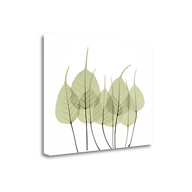 Tangletown Fine Art 'Woodlands I' by ACEE Graphic Art on Wrapped Canvas; 35'' H x 45'' W
