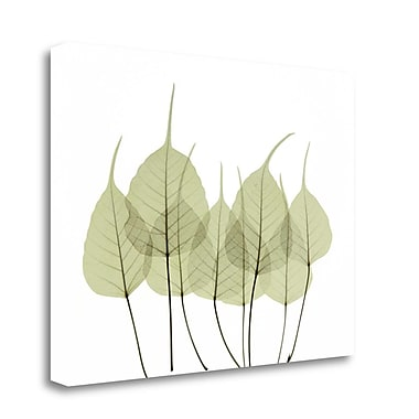 Tangletown Fine Art 'Woodlands I' by ACEE Graphic Art on Wrapped Canvas; 18'' H x 23'' W