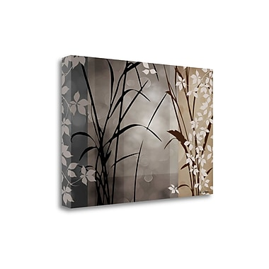 Tangletown Fine Art 'Silver Whispers II' by Edward Aparicio Graphic Art on Wrapped Canvas