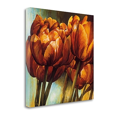 Tangletown Fine Art 'Floral Radiance I' by Linda Thompson Painting Print on Wrapped Canvas