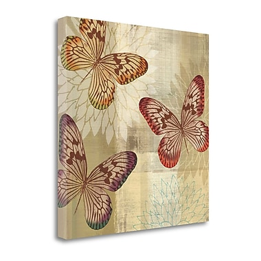 Tangletown Fine Art 'Tropical Butterflies I' by Tandi Venter Graphic Art on Wrapped Canvas