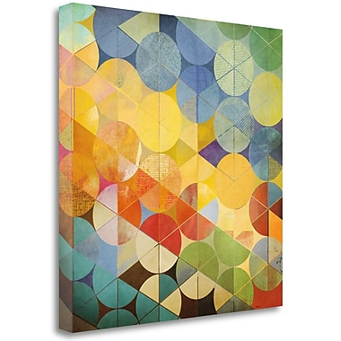 Tangletown Fine Art 'Full Circle II' by Noah Graphic Art on Wrapped Canvas; 20'' H x 20'' W