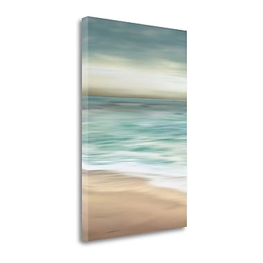 Tangletown Fine Art 'Ocean Calm II' by Tandi Venter Graphic Art on Wrapped Canvas; 48'' H x 32'' W