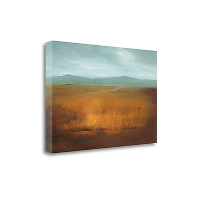 Tangletown Fine Art 'Last Light' by Caroline Gold Graphic Art on Wrapped Canvas; 26'' H x 39'' W