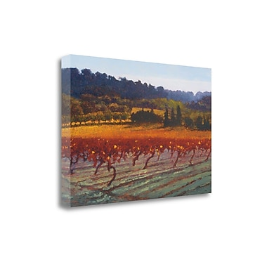 Tangletown Fine Art 'Saint Saturnin-l-Apt' by Kent Lovelace Graphic Art on Wrapped Canvas