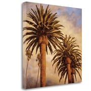 Tangletown Fine Art 'Fog Over Canary Palms' by Rick Garcia Graphic Art on Wrapped Canvas