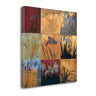 Tangletown Fine Art 'Iris Nine Patch II' by Don Li-Leger Graphic Art on Wrapped Canvas