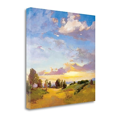 Tangletown Fine Art 'Golden Horizons' by Vicki McMurry Painting Print on Wrapped Canvas