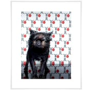 East Urban Home 'Dog Collection - Dog Days' by Catherine Ledner Photographic Print
