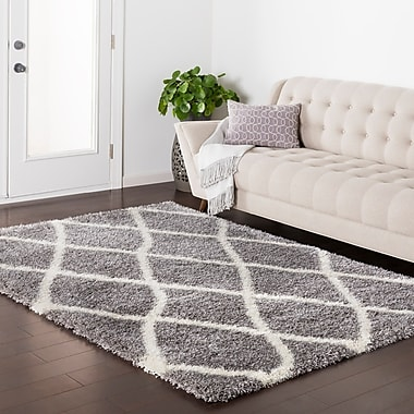 Williston Forge Kolton Gray Area Rug; 5'3'' x 7'3''