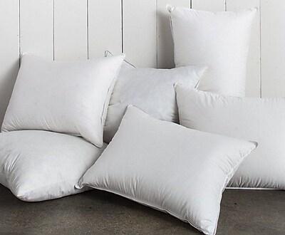 Alwyn Home White Super Soft Square Pillow Insert