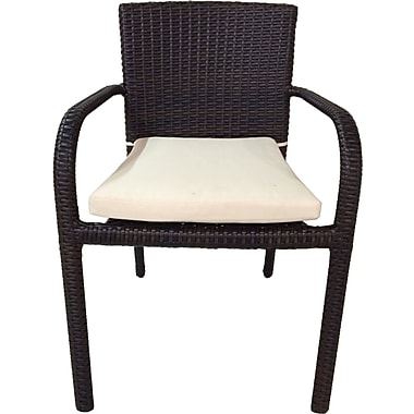Benasse River Patio Dining Arm Chair w/ Cushion (Set of 2)