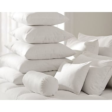 Alwyn Home White Pillow Insert (Set of 2); 25'' H x 25'' W
