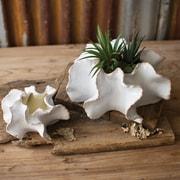 Kalalou Organic 2 Piece Ceramic Planter Set