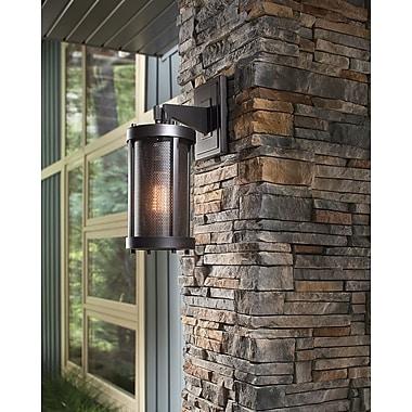 17 Stories Patton 1-Light Outdoor Wall Lantern; 18.5'' H x 7.25'' W x 9'' D