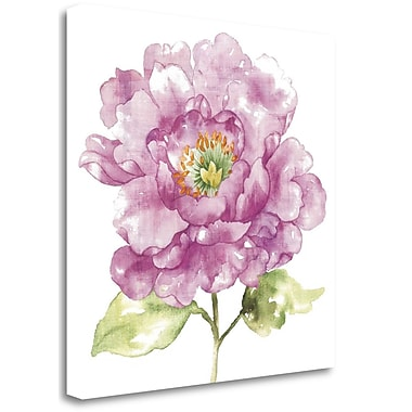 Tangletown Fine Art 'Water Flower I' Print on Canvas; 35'' H x 35'' W