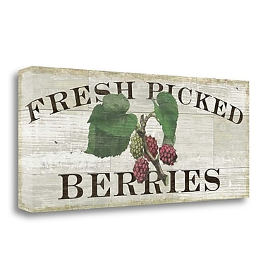 Tangletown Fine Art 'Farm Fresh Raspberries' Textual Art on Canvas; 16'' H x 40'' W