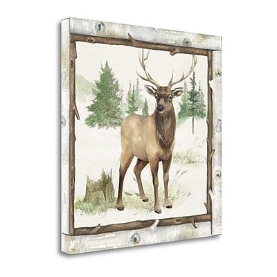 Tangletown Fine Art 'Family Cabin I' Print on Canvas; 35'' H x 35'' W