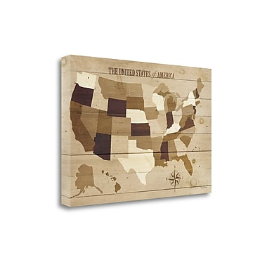 Tangletown Fine Art 'USA Modern Vintage Wood' by Michael Mullan Graphic Art on Wrapped Canvas