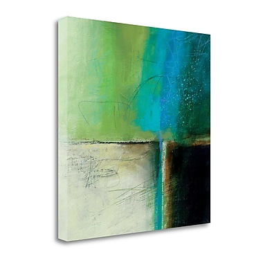Tangletown Fine Art 'Water' by Jane Davies Painting Print on Wrapped Canvas; 35'' H x 35'' W