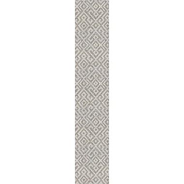 Ebern Designs Waller Gray Indoor/Outdoor Area Rug; Runner 2'3'' x 11'9''